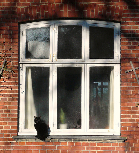 how to fit diy double glazing