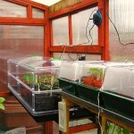 Greenhouse Propagating Benches And Electric Propagators