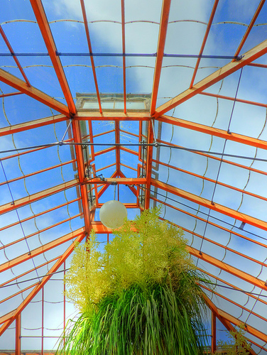 Greenhouse Shape, greenhouse Structure