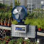 Greenhouse Heating Methods