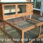 Rabbit Hutch Tips