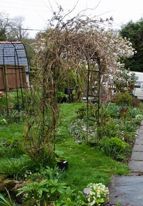 Gardening jobs in april for Gardening jobs for april