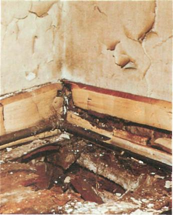 Fixing Damp, Rot And Corrosion